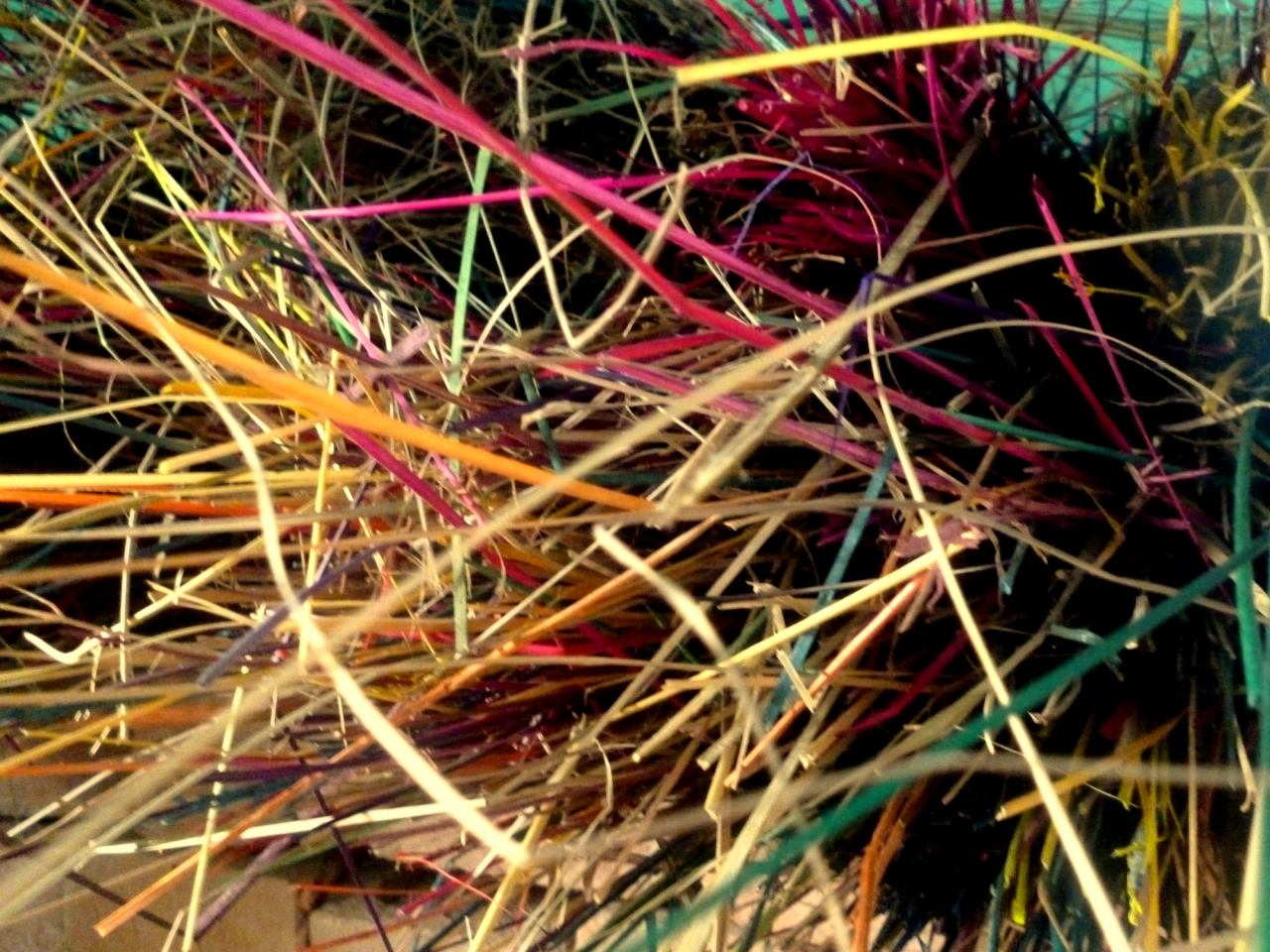 sikki-grass